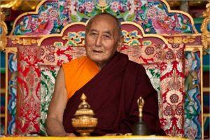 domang-yangthang-rinpoche-3